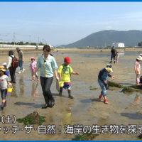 #04キャッチザ自然海岸の生き物を探そう_番組_002