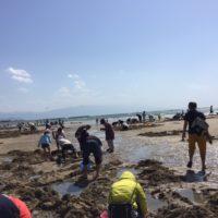 IMG_砂浜ひろ1387