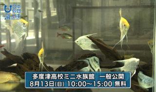 香川県-A・015-多度津高校ミニ水族館-s02