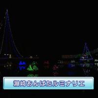 香川県-A・024-淵崎おんばたルミナリエ-s02