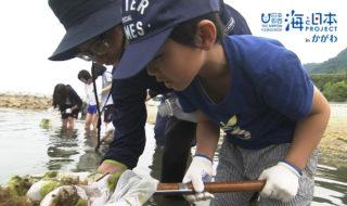 海の生き物観察講座 日本財団 海と日本PROJECTinかがわ 2018 #01